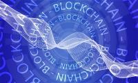 bo-giao-duc-malaysia-thie-t-la-p-he-tho-ng-xac-minh-ba-ng-dai-hoc-tho-ng-qua-blockchain