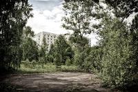 chay-rung-o-chernobyl-muc-phong-xa-tang-dot-bien