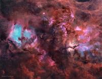 cygnusstarless-cameron-8859